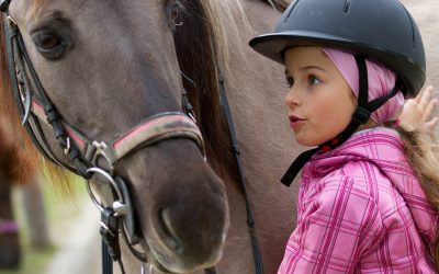 Horses, Critters and Camp, Oh My!