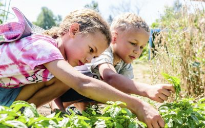 Planting Seeds: Nurturing Learning, Health and Happiness through Gardening Together