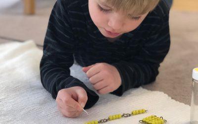 Engaging Minds & Hearts : Choosing a Montessori or Waldorf School